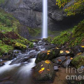 Mike Dawson - Fall at Latourell Falls