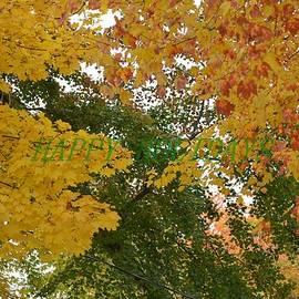 Sonali Gangane - Fall Canopy