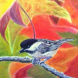 Jay Johnston - Fall Chickadee