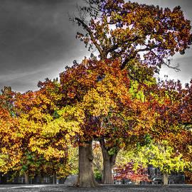 John Straton - Fall Color at Woodward Park 3f