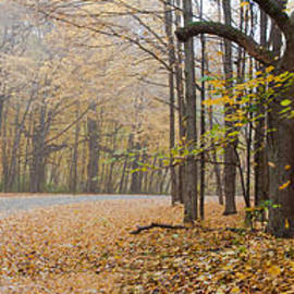 Jim Finch - Fall Colors Panorama - Moraine View State Park