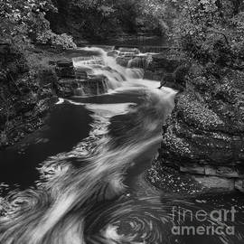 Michele Steffey - Fall Creek Flow II