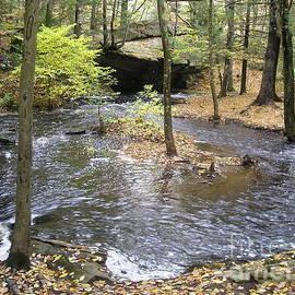 Barbie Corbett-Newmin - Fall Flow in Rhode Island