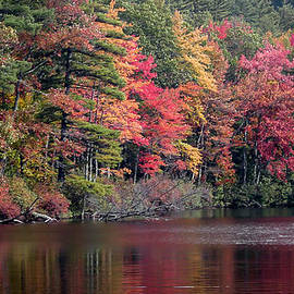 Laura Duhaime - Fall Foliage Reflection