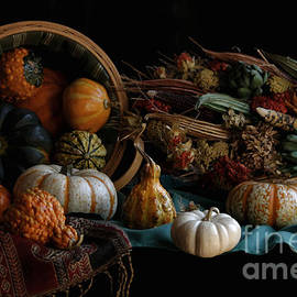 Luv Photography - Fall Harvest 2