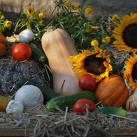 Luv Photography - Fall Harvest