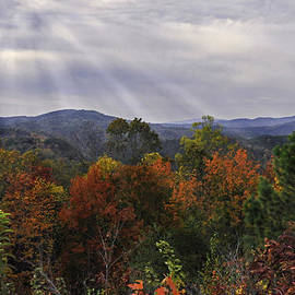 Lynn Bauer - Fall Highlights on the Blue Ridge