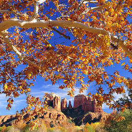 Dan Myers - Fall In Sedona