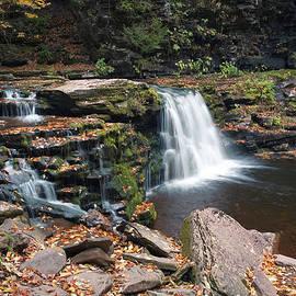 Gene Walls - Fall Leaves Embellish Cayuga Falls