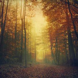 Dirk Wuestenhagen - Fall Morning