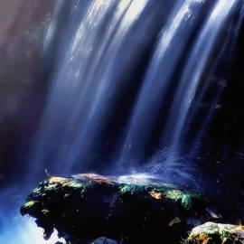 Barbara D Richards - Fall Splash