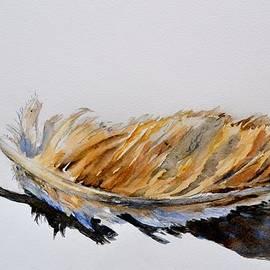 Beverley Harper Tinsley - Fallen Feather