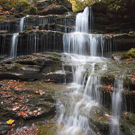 Gene Walls - Fallen Leaves On The Nameless Waterfall