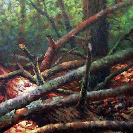 Timothy Jones - Fallen Oak