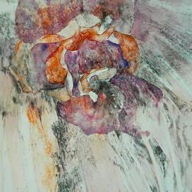 Carolyn Rosenberger - Falling Rose