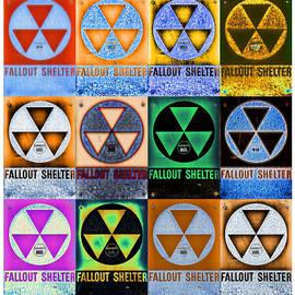 Stephen Stookey - Fallout Shelter Mosaic