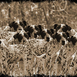 EricaMaxine  Price - FAMILY PORTRAIT BEFORE THE HUNT-featured picture in Large Dogs Only Group