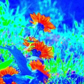 Karen  Majkrzak - Fanciful Sunflower Abstract