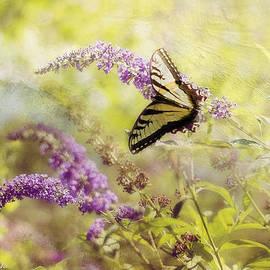 Kathy Jennings - Fantasy Garden Series II