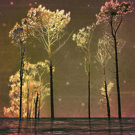 Daniel Ferreira-Leites - Fantasy Landscape