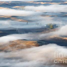 Mike  Dawson - Farm beneath the Fog