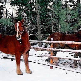 Miss Dawn - Farm Horses In The Wintertime