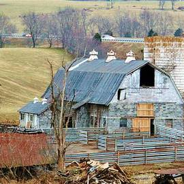 Cynthia Guinn - Farm In Virginia