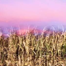 Dan Sproul - Farm Sunset