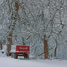Nikolyn McDonald - Farm Wagon in Winter