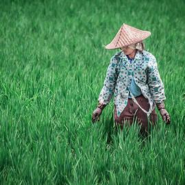 Shiv Ramky - Farmer working in Bali Indonesia