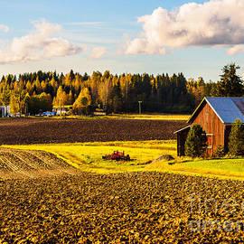 Ismo Raisanen - Farmer