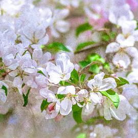 Alexander Senin - Feast of life 23 - Spring Wreath