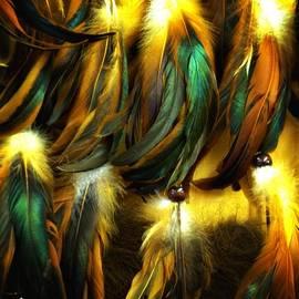Newel Hunter - Feather Dancers