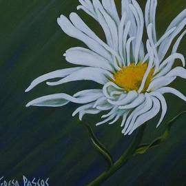 Teresa  Pascos - Feathered Daisy