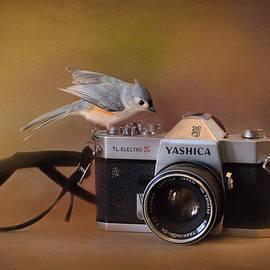 Jai Johnson - Feathered Photographer