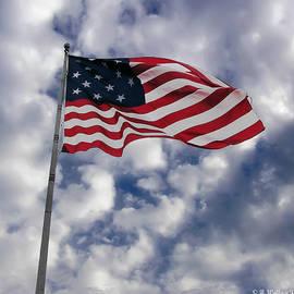 Brian Wallace - Federal Hill Flag