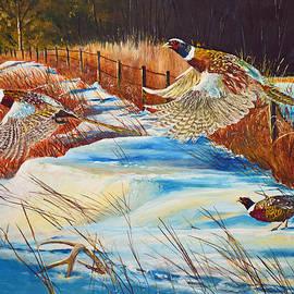 Alvin Hepler - Fenceline Pheasants