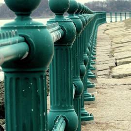 Lori Pessin Lafargue - Fencing the Shoreline