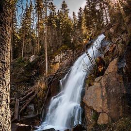 Steven Reed - Fern Falls