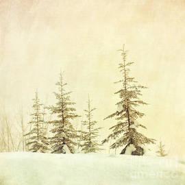Priska Wettstein - Winter
