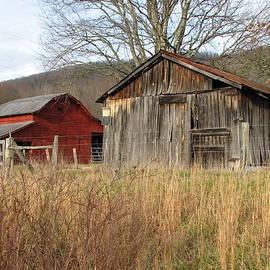 Sue  Thomson - Field and Farm