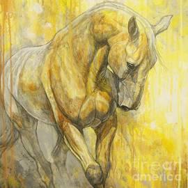 Silvana Gabudean - Fields of Gold