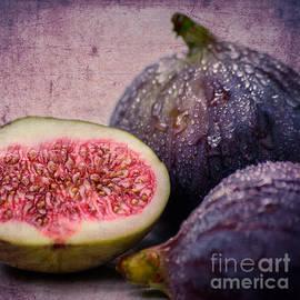 Hannes Cmarits - Figs 1x1