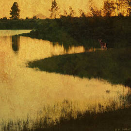 R christopher Vest - Find The Fawn-- Summit Sunset