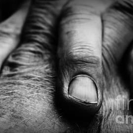 Clare Bevan - Fingers