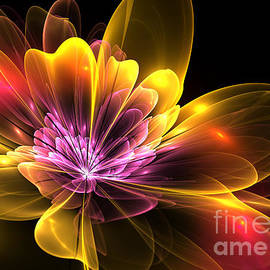 Svetlana Nikolova - Fire Flower