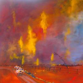 Margaret Morgan - Fire in the night sky
