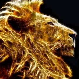 Michael Durst - Fire Lion