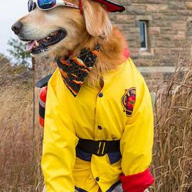 R Steven Diaz - Firedog