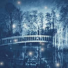 Danny Van den Groenendael - Fireflies